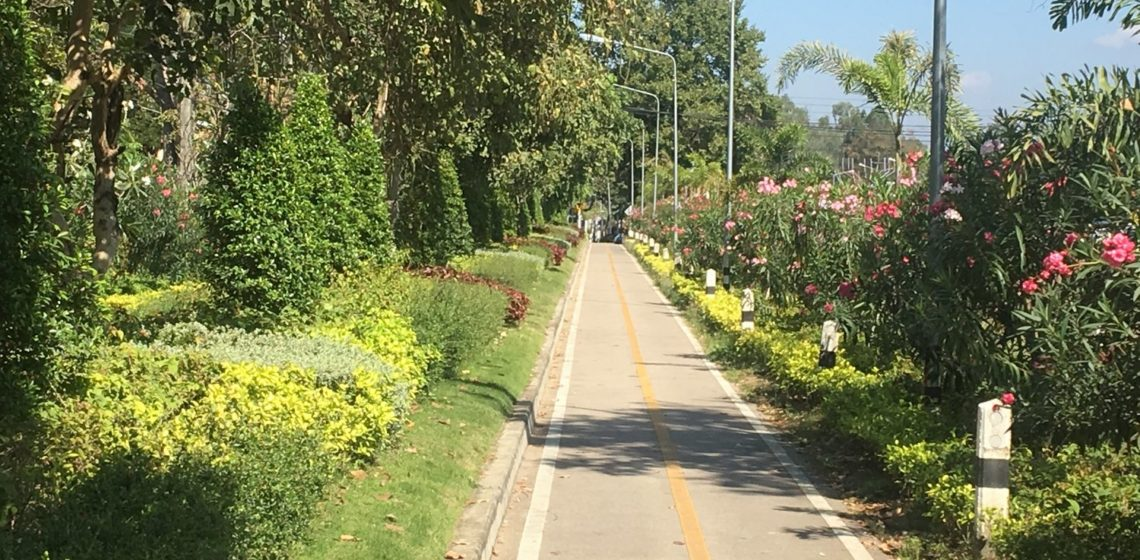 Bike Walking Path In Chiang Mai