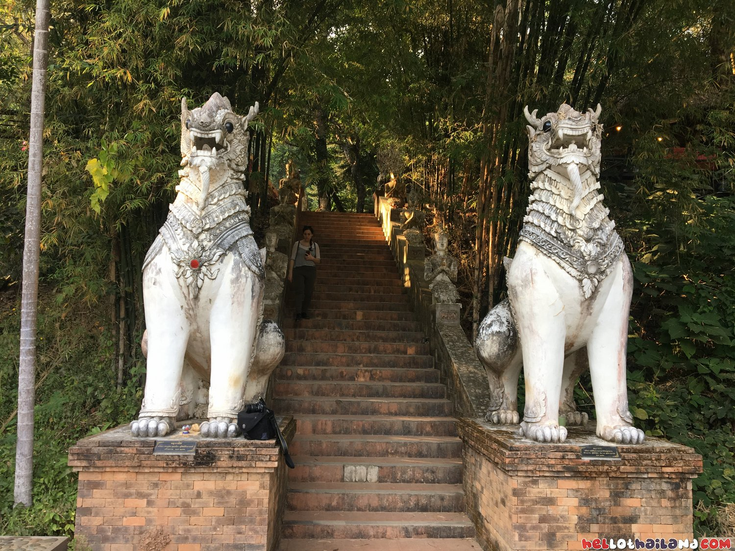Amazing Statues at Wat Palad Chiang MAi Doi Suthep